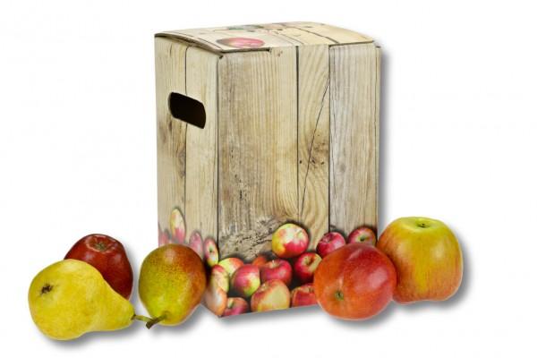 Bag in Box Karton Farbe braun